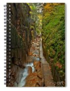 Looking Down Flume Gorge Spiral Notebook