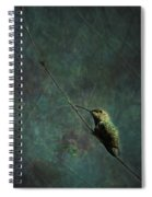 Looking For Monet 1 Spiral Notebook