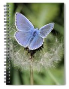 Looking For Nectar In All The Wrong Places Spiral Notebook