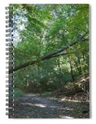 Looking For Sunlight Spiral Notebook
