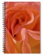Looking Good Rose Spiral Notebook
