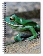 Looking Green Spiral Notebook