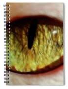 Looking Into The Soul Spiral Notebook