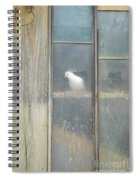 Looking Out The Coop Spiral Notebook