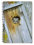 Looking Outside The Box Spiral Notebook