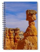 Looking Over Sunset Point  Spiral Notebook