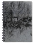 Looking Through The Frost I Spiral Notebook