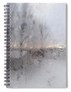 Looking Through The Frost IIi Spiral Notebook