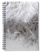 Looking Through The Frost Iv Spiral Notebook