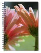 Looking To The Sun Spiral Notebook