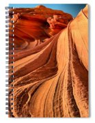 Looking Up At The Dragon Spiral Notebook