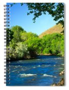 Looking Up Pine Creek Spiral Notebook