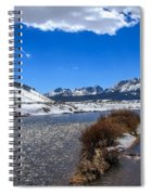 Looking Up The Salmon River Spiral Notebook