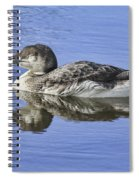 Loon On Vacation Spiral Notebook