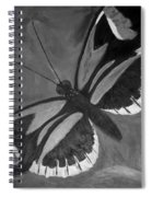 Lord Of The Butterfly Spiral Notebook