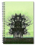 Lord Of The Trees Spiral Notebook