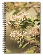 Lorie Ann Spiral Notebook