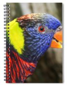 Lorikeet Spiral Notebook