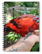 Lory Landing Spiral Notebook