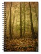 L.ost Spiral Notebook