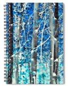 Lost In A Dream Spiral Notebook
