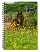 Lost In Buttercups Spiral Notebook