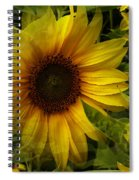Lost In The Crowd Spiral Notebook