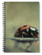 Lost Lady Spiral Notebook
