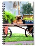 Lost Luggage Spiral Notebook