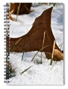 Lost To The Seasons Spiral Notebook