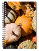 Lots Of Little Gourds Spiral Notebook