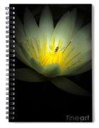 Lotus And Bee Spiral Notebook