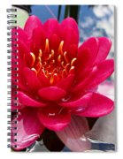 Lotus Cloud Spiral Notebook