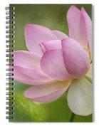 Lotus Dance Spiral Notebook
