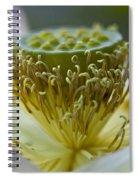 Lotus Detail Spiral Notebook