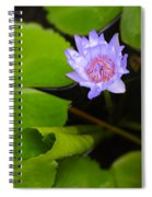 Lotus Flower And Lily Pad Spiral Notebook