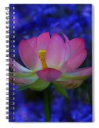 Lotus Flower In Blue Spiral Notebook