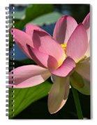 Lotus - Flowers Spiral Notebook
