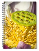Lotus Heart Spiral Notebook