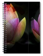 Lotus In Transition Spiral Notebook