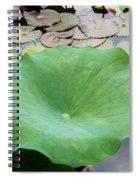 Lotus Leaf Spiral Notebook