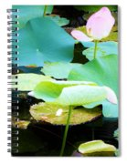 Lotus Lilly Pond Spiral Notebook