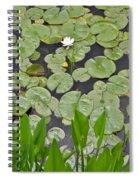 Lotus Pads Spiral Notebook