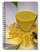 Lotus Pollinator Spiral Notebook
