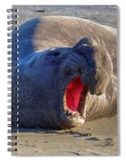 Loud Mouth Spiral Notebook