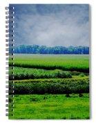 Louisiana Greenway Spiral Notebook