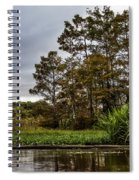 Louisiana Landscape Spiral Notebook