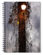Louisiana Light Post Spiral Notebook