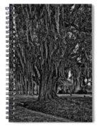 Louisiana Moon Rising Monochrome 2 Spiral Notebook