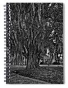 Louisiana Moon Rising Monochrome  Spiral Notebook